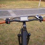 48V 1000W elektrischer Gebirgsfahrrad-fetter Gummireifen-elektrisches Fahrrad
