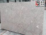Brames de marbre grises de marbre grises de Miura d'origine chinoise pour le revêtement de partie supérieure du comptoir/plancher/mur