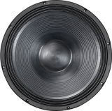 21inch Subwoofer 800W neues Produkt-China-Lieferant Xs21ND-1