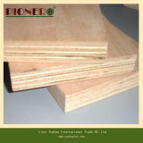 madera contrachapada barata de 1220X2440m m de la fábrica china