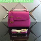Neueste Hersteller-Frauen-Form M sackt Mehrfarbenhandtasche/Paket ein