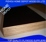 La película de Brown de la base del álamo de la buena calidad hizo frente a la madera contrachapada