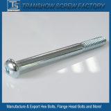 Tornillo de casquillo estándar de acero de la pista de socket del hexágono de la placa ASTM del cinc
