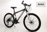 Preiswerter Berg fährt Fahrräder der Qualitäts-MTB rad