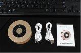 Mini altofalante dos multimédios de Bluetooth para ao ar livre