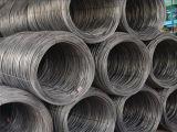 SAE1006/SAE1008 fil d'acier Rod pour la construction