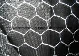 공장 베스트셀러 뜨개질을 한 철망사 유형 및 Gabion 메시 6각형 철사 그물세공