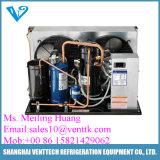 Bitzer Kompressor-Luft abgekühltes kondensierendes Gerät