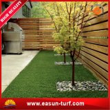 [سغس] شهادة حديقة منظر طبيعيّ عشب اصطناعيّة