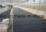 地下工学防水HDPEのGeomembraneの黒いフィルム