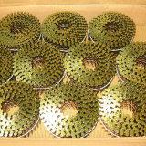 Chiodi pneumatici galvanizzati della bobina del pallet della tibia della vite
