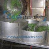 Linha de processamento vegetal da secagem do ar quente