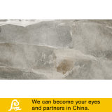 Telha rústica da porcelana do projeto do cimento para o assoalho e a parede Bsk126607/Bsk126608/Bsk126609 600X1200mm