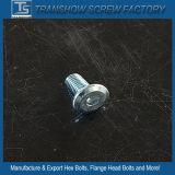 Heiße Hexagon-Kontaktbuchse-Kopf-Kopfschraube des Verkaufs-2016