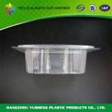 BPA-Freies freies Scharnier-Wegwerfplastiknahrungsmittelbehälter
