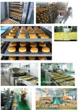 음식 공장 빵 건빵 생산 라인 전기 갱도 오븐