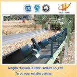 Nastro trasportatore di nylon del tessuto (NN100-NN500)