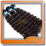 Grado 5A Curly brasiliano Weave Hair From Kbl
