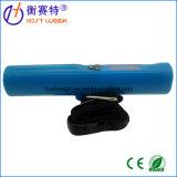 Curso portátil novo de Digitas das escalas de peso que pesa a escala da bagagem com o luminoso azul da tocha de 8 diodos emissores de luz para a mala de viagem