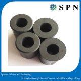 亜鉄酸塩の永久マグネット多重極リング