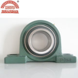 Lowest Price (UCP305)를 가진 크롬 Steel Pillow Block Bearings