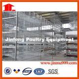 自動給水システム(JFA90)が付いている卵の層の鶏のケージ