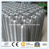Treillis métallique soudé galvanisé plongé chaud/treillis métallique carré