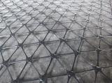증강을%s Plastic/PP Geogrid가 Multidirection에 의하여 기지개했다