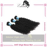 加工されていない高品質のMalaysiuanのバージンの巻き毛の波の毛の人間の毛髪のバージンのインドの毛の織り方