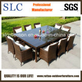 Anúncio publicitário ao ar livre de vime da mobília da mobília ao ar livre (SC-A7197)