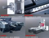 중국제 높은 비용 성과 수평한 CNC 절단기