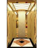 صاحب مصنع محترف من مسافرة مصعد في الصين