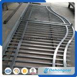 Belle grille résidentielle de fer travaillé de sûreté (dhgate-31)
