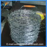 電流を通された有刺鉄線