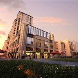 Rendição do edifício complexo comercial da grande escala