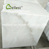 Marbre blanc de la Chine pour la villa/plancher de Chambre/hôtel et le revêtement de mur
