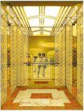 Elevatore Gearless del passeggero dell'azionamento di CA-Vvvf della trazione con tecnologia tedesca (RLS-210)