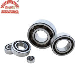 Industrielles Angular Contact Ball Bearing (7020C)