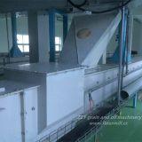 piccolo macchinario di macinazione di farina del mais 20tpd con l'alta qualità e l'alto rendimento