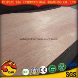 madera contrachapada del anuncio publicitario de la cara del cedro de lápiz del rojo de 6m m