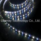 Streifen-Beleuchtung RGBW des Marken-Weihnachtslicht-24V des Volt-5050SMD LED