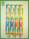 Qualitäts-aber preiswerterer Preis-erwachsene Zahnbürste mit Standplatz