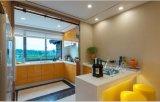 Мебель Yb1707037 кухни новой оптовой продажи конструкции высокая лоснистая