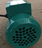 또는 Three Phase 0.5HP Qb60 Clean Water Pump 1inch Outelt 골라내십시오