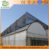 Estufa Galvanizada De Aço Galvanizado De Leite De Agricultura Estufa Para Comercial