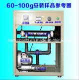 De Generator van het Ozon van de Buis van de Legering van het titanium (sY-G100g)