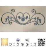 Pista de la puerta del hierro labrado para la decoración