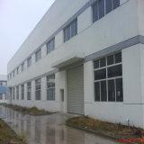 Gruppo di lavoro prefabbricato/magazzino della struttura d'acciaio dell'indicatore luminoso dell'ampia luce di nuovo disegno