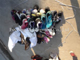 Используемые ботинки второй руки ботинок с самым низким ценой