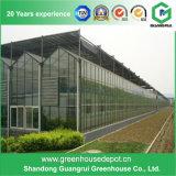최고 PC 보드 정면 판매에 유리제 온실 장 녹색 집